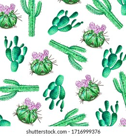 Watercolor cactus pattern. Illustration of a tropical garden in a watercolor style.