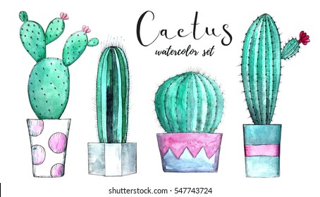 Watercolor cactus set. Hand painted illustration. For invitation, decoration, card, menu, bridal shower, poster.