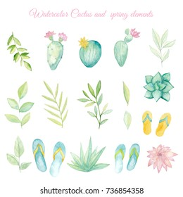 Watercolor cactus and spring elements