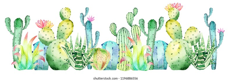 Watercolor cactus, succulent border isolated on white background