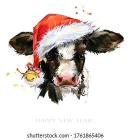 watercolor calf. cute Baby bull illustration. cattle. farm animal.