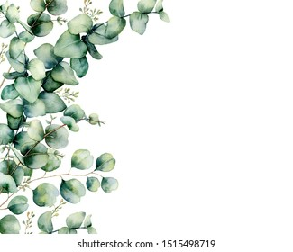 Watercolor card with eucalyptus bouquet. Hand painted eucalyptus branches and leaves isolated on white background. Floral illustration for design, print, fabric or background