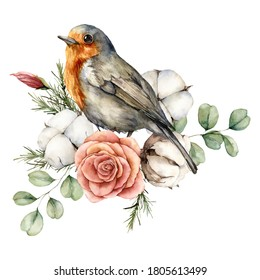 Watercolor card with robin redbreast, cotton, rose and eucalyptus leaves. Hand painted bird and flowers isolated on white background. Floral illustration for design, print, fabric or background.