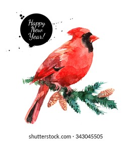 Watercolor Cardinal Red Bird illustration. merry Christmas and Happy New Year card