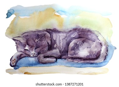 Watercolor cat illustraion sketch. Cute grey British cat pet sleep on blue pillow handdpawn painting isolated on white background.