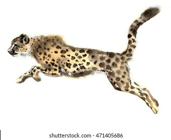Watercolor cheetah. Watercolor wild cat. Animal silhouette sketch. Wildlife art illustration. Vintage graphic for fabric, postcard, print, greeting card, book, poster, tee-shirt, kids toys