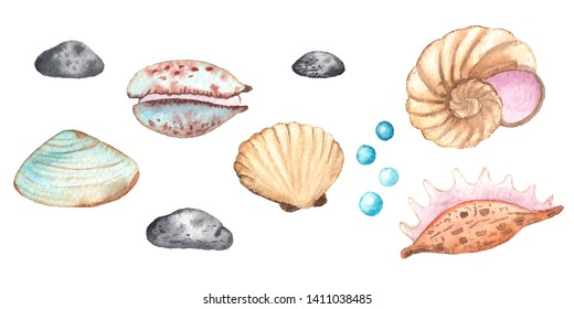 Watercolor children's elements with underwater creatures: whale, turtle, crab, octopus, starfish, narwhal, jellyfish, seaweed, corals, shells for baby shower, shirt design, invitations, decoration,