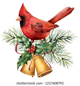 Watercolor Christmas card with red cardinal and winter design. Hand painted bird with bells, holly, red bow, berries, fir branch isolated on white background. Holiday symbol for design, print