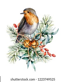 Watercolor Christmas card with robin, bells and winter design. Hand painted bird with eucalyptus leaves, golden bells, fir branch and barberry isolated on white background. Holiday symbol for design