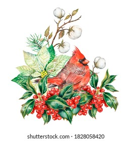 Watercolor christmas composition with red cardinal bird and holly berries, cotton branches, christmas greeting card, holiday