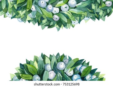 Watercolor Christmas floral. Mistletoe bunch, isolated on a white background, watercolor illustration