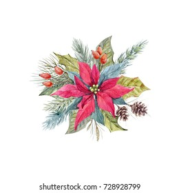 Watercolor Christmas illustration flower poinsettia, spruce branches with cones,red  berry, fir cones