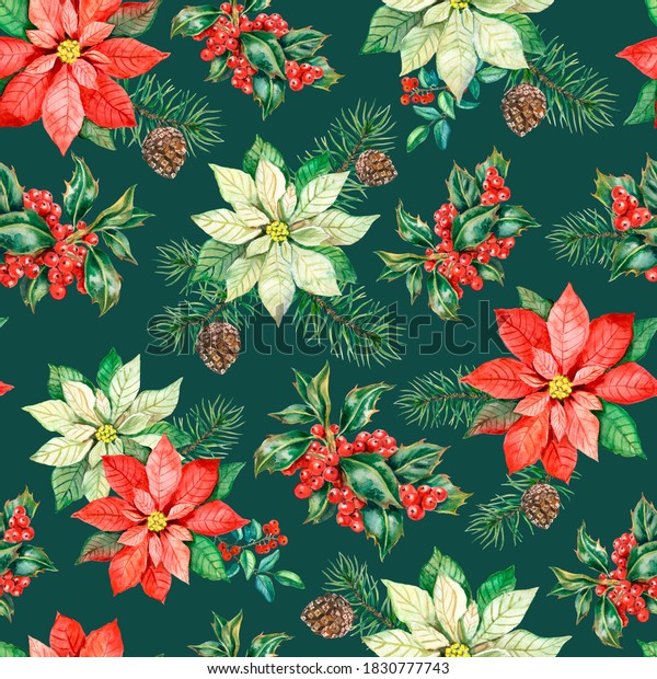 Watercolor christmas pattern with red and white poinsettia flowers and holly berries on dark green background