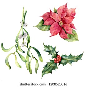 Watercolor Christmas plants. Hand painted poinsettia, mistletoe, holly isolated on white background. Holiday symbol. Botanical illustration for design, print