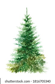 Watercolor Christmas tree, isolated on white