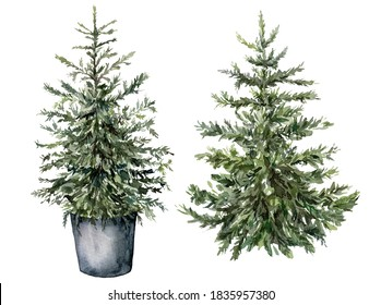 Watercolor Christmas tree set. Hand painted New Year trees isolated on white background. Holiday illustration for design, print, fabric or background.