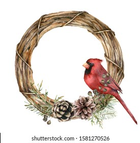 Watercolor Christmas wreath with red cardinal and pine cones. Hand painted fir branches, seeds and coniferous isolated on white background. Holiday symbol for design, print or background