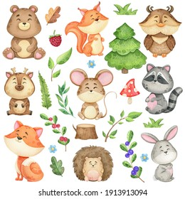 watercolor clip art with forest animals and natural elements, branches, leaves and trees. Illustration of a bear, fox, squirrels and other wild animals on a white background