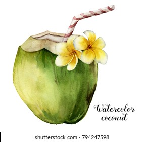 Watercolor coconut with plumeria flowers. Hand painted exotic drink with striped tube and floral decor isolated on white background. Tropical cocktail with a straw. Food illustration for design.