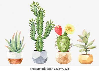 Watercolor collection cactus cacti and succulents in pots. Elements layer path, di-cut alpha path clipping path isolated on white background for wedding greeting card.