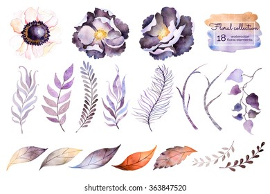 watercolor collection with flower,leaves,branche,feather.Hand painted collection with 18watercolor elements.Set of floral elements for your composition.Can be used for wedding invitation