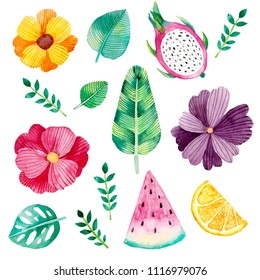 Watercolor collection with flowers, fruits and leaves