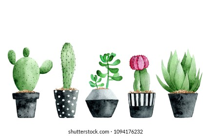 Watercolor collection with succulents and cactus on white background