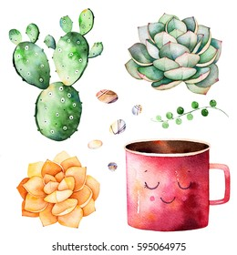 Watercolor collection with succulents plants,pebble stones,cactu,cute mug cup.Handpainted iclipart isolated on white background.World of succulent and cactus collction.Perfect for your unique design.
