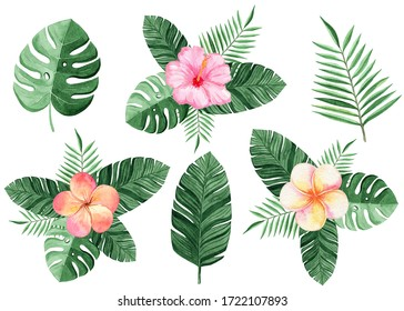 watercolor color tropical flowers and palm leaves compositions set on white background