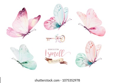 Watercolor colorful butterflies, isolated on white background. blue, yellow, pink and red butterfly spring illustration.