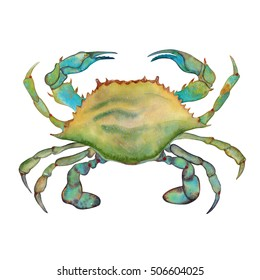 Watercolor colorful crab. Hand drawn. Isolated on white