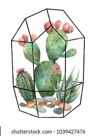 Watercolor composition of cacti and succulents in terrariums geometric florariume isolated on white background. Flower illustration for your projects, greeting cards and invitations.