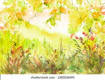 Watercolor country forest landscape. Autumn, summer forest orange, yellow. Branches of birch, aspen, willow, bushes, wild plants and wild grass. Art illustration, abstract splash of paint. Landscape