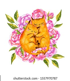 Watercolor couple of cats on floral background. Valentine's day cats. Cats in love.  Sleeping romantic cats with peonies.