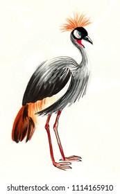 Watercolor crane bird