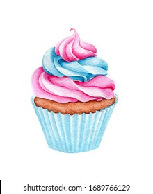 Watercolor cupcake. Sweet for Birthday postcard Greeting card. Dessert for holiday and party. Hand drawn illustration for menu. Artistic design with food  for cafe. Freehand drawing