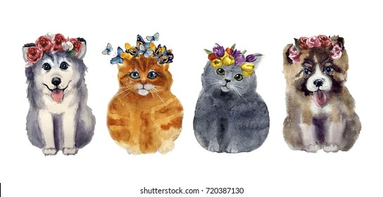 Watercolor cute cats and dogs with flowers on the white background