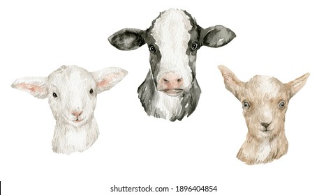 Watercolor cute farm animals. Cow, sheep, goat. Heads of domestic animals. Rural life