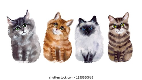 Watercolor cute funny cats on the white background
