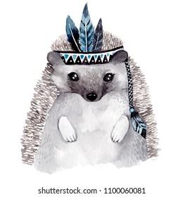 Watercolor cute hedgehog