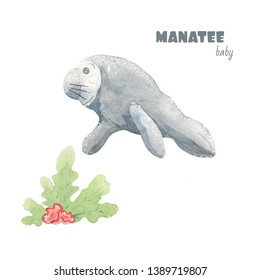 WATERCOLOR CUTE MANATEE BABY ILLUSTRATION