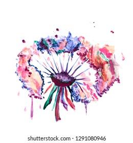 watercolor dandelion flower