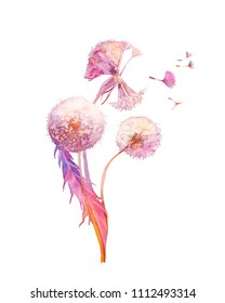 Watercolor dandelion illustration. Blowballs bouquet on white background. Hand painted bright artwork.