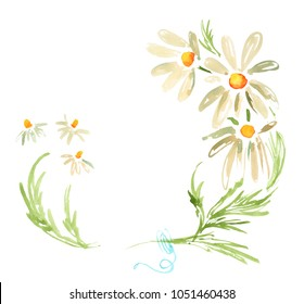 Watercolor decorative frame with daisies camomile flowers
