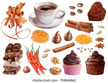 Watercolor desserts, nuts, spices. Chocolate pieces, chocolate muffin  with cream and berry, coffee,  cinnamon, chili peppers, cookies, cardamon, anise, orange, almond, walnut, hazelnut isolated.