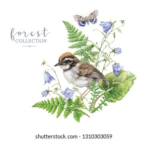 Watercolor detailed illustration with forest plants, bell flowers, bird and butterfly isolated on white background. Botanical arrangement can be used for scrap booking, boho wedding, greeting design