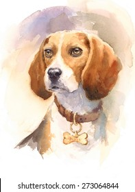 Watercolor Dog Beagle Portrait - Hand Painted Animals Pets Illustration isolated on white background