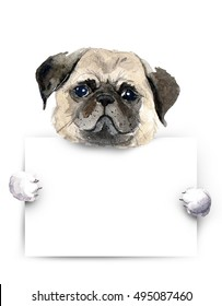 Watercolor Dog with placard. Pug dog above white banner. Template for gift certificate. Mock up.International homeless animals day.Pets adoption concept. Flayer, poster template