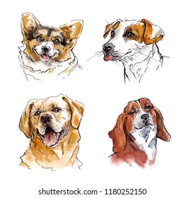 Watercolor dogs set with corgi, labrador retriever, jack russell terrier and beagle