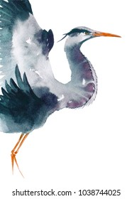 Watercolor draw of heron in japanese style